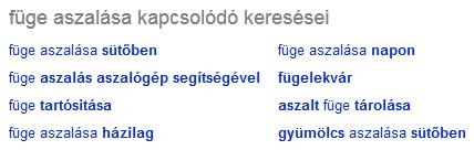 kapcsolódó keresések a Google-ben